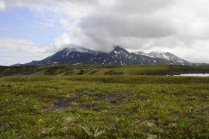 типичные-мстообитания-северного-оленя-на-Камчатке-300x200