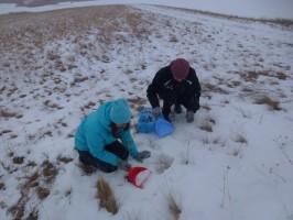 Sbor-snega-dlya-issledovaniya